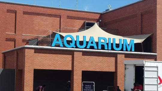 9 CUSTOM STRETCH TENT WATERFRONT AQUARIUM CHINO